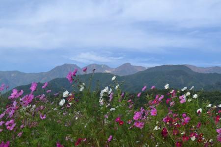 紅葉の南駒ヶ岳を背景に